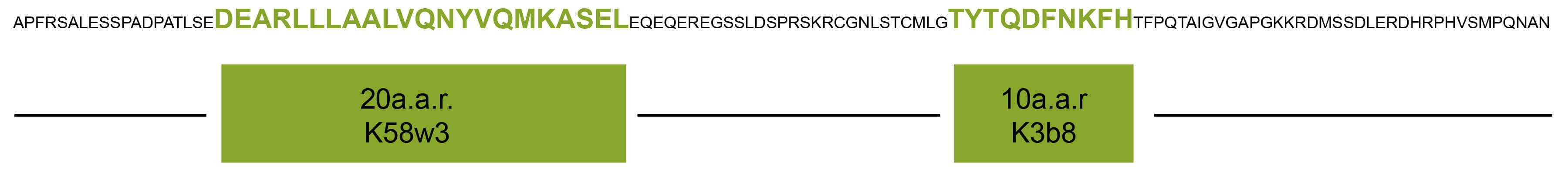 PCT抗体识别位点